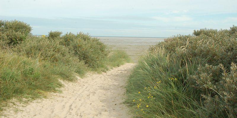 Hemmes de Marck beach